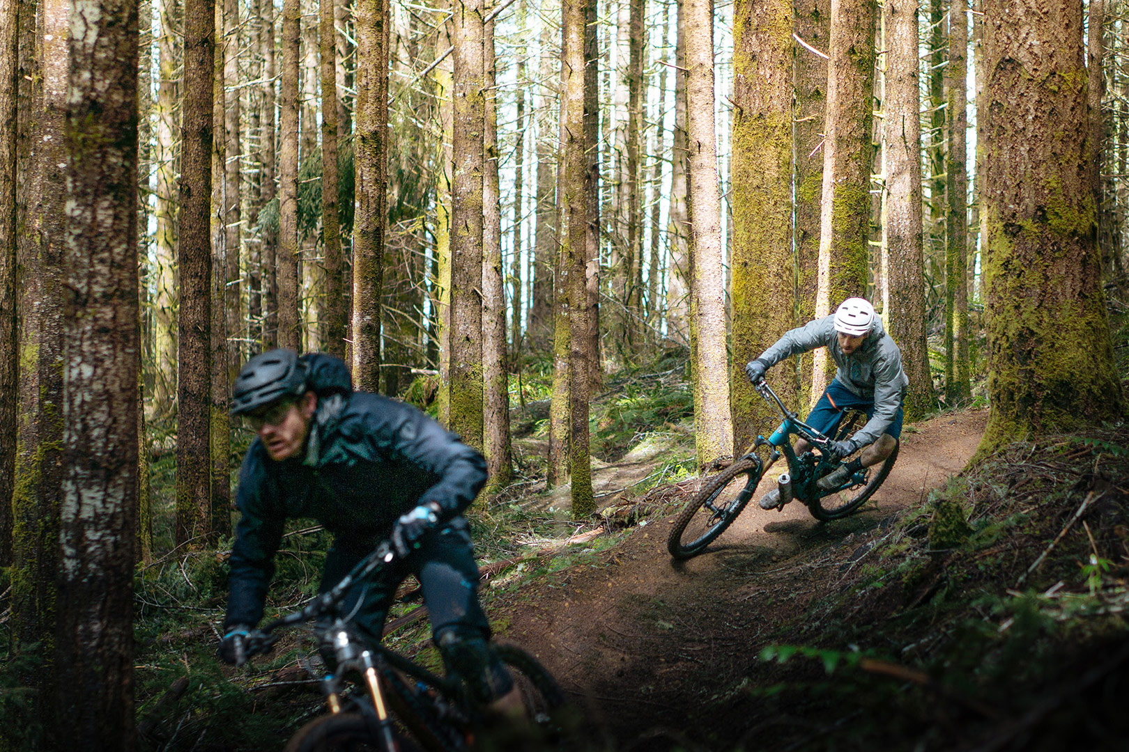 From Sawmills to Singletrack